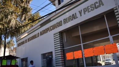 Photo of Sedarpa ofrece créditos para el sector campesino ante recorte de presupuesto