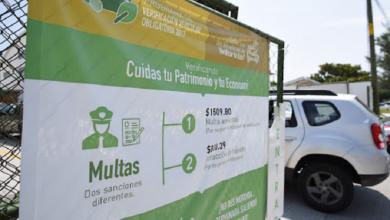 Photo of Busca Sefiplan números negros en el IPE y cero corrupción en verificentros