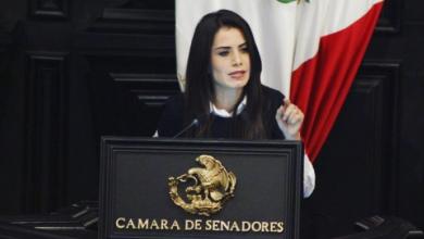 Photo of Verónica Delgadillo propone combate a pornografia infantil y el turismo sexual con menores de edad