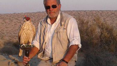 Photo of Jaime Samour, 38 años dedicados al estudio y atención de aves de presa