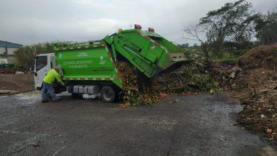 Photo of Actualmente se procesan 40 toneladas de residuos para composta en Xalapa