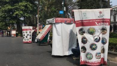 Photo of Pese a reapertura del Parque Juárez boleros no han podido recuperarse