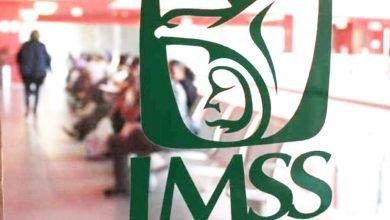 Photo of IMSS mantiene cobertura de aseguramiento para todo tipo de trabajadores
