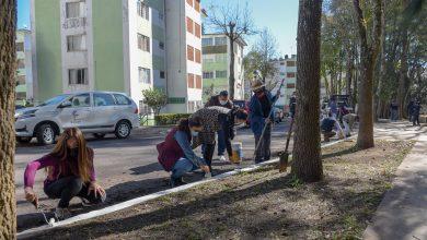 Photo of Realizan jornada de mantenimiento  en Jardines de Xalapa
