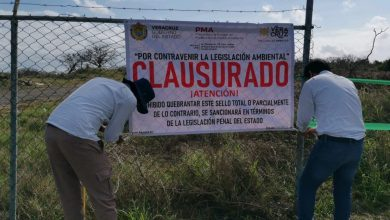 Photo of Clausura PMA obra en Riviera veracruzana por posible daño ambiental