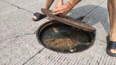 Photo of Hay excremento flotando en fraccionamiento en Medellín