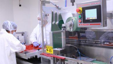 Photo of Inicia en Querétaro la producción de dos millones de vacunas antiCOVID