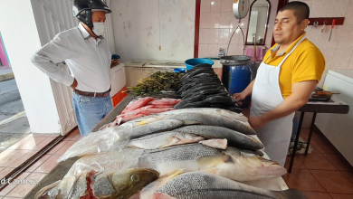 Photo of Baja venta de pescados y marisco hasta 50%
