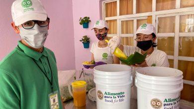 Photo of Brindan alimento gratuito en Coatepec a afectados por pandemia